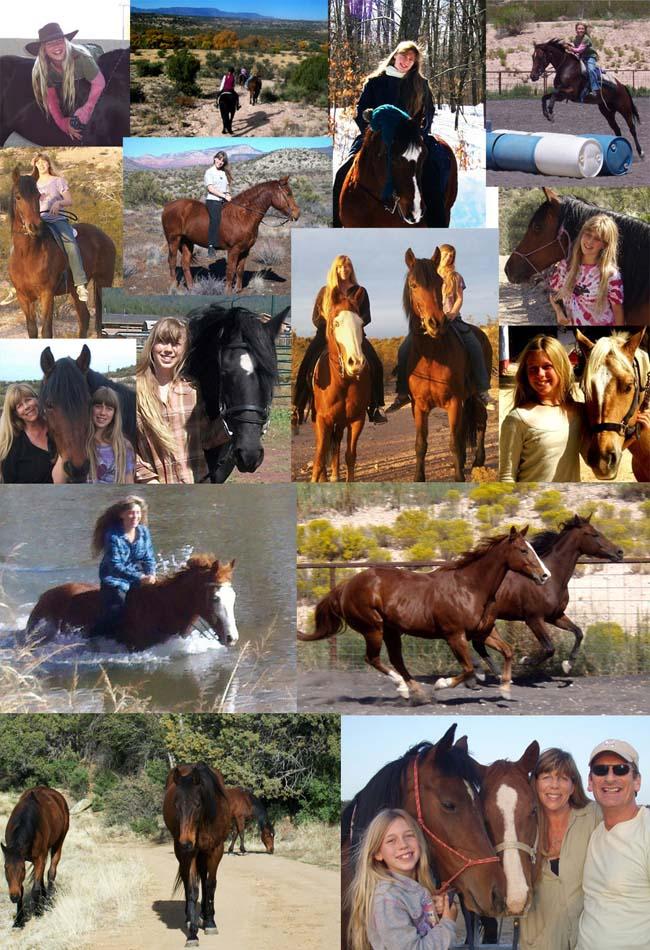 1_horses_best